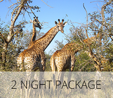 2-Night-Package