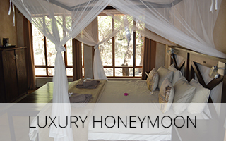 Luxury-Honeymoon