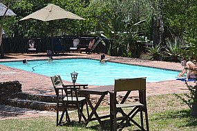 Guests in Pool