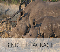 3 Night Package
