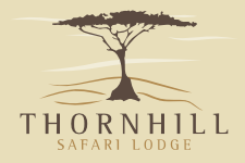 Affordable Safari Lodge in South Africa